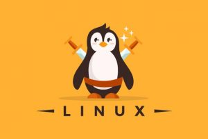 Linux Mastery: Master the Linux Command Line in 11.5 Hours Course Catalog Learn the Linux Command Line from Scratch and Improve your Career with the World's Most Fun Project-Based Linux Course!