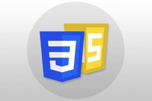 CSS & JavaScript - Certification Course for Beginners Course Catalog Learn how to Add Dynamic Client-Side Functions to your Web Pages using CSS & JavaScript