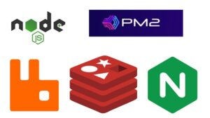 Node JS Cluster with PM2, RabbitMQ, Redis and Nginx - Web Courses Learn how to create Node JS cluster, use PM2, RabbitMQ, Redis Cache and Nginx as a Reverse proxy and load balancer