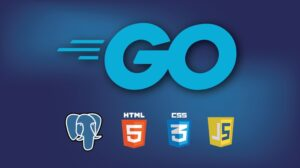 Building Modern Web Applications with Go (Golang) Learn to program in Go from an award-winning university professor