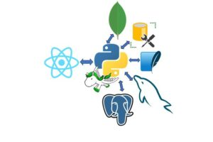 React JS and Python Django Full Stack Master Course learn to create a full stack web application from scratch using Python Django and React JS.